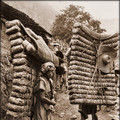 men-laden-with-tea-sichuan-sheng-china-1908-ernest-h-wilson-restored_md